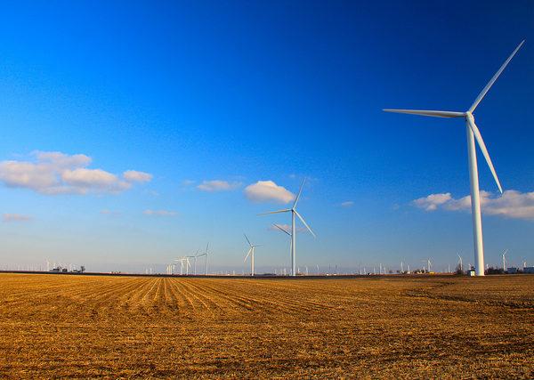 Renewable Resources: The Politics of Manna (Exodus 16:1-18)