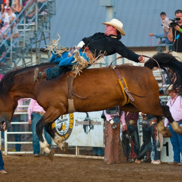 Rodeo in the Rain – American Politics and Religion in the 2016 Presidential Race