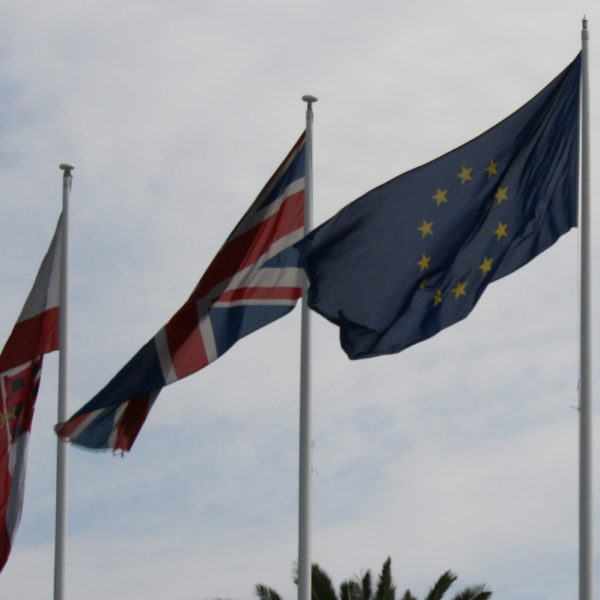 Brexit: An Exercise in the Violation of Subsidiarity (Anna P. Blackman)