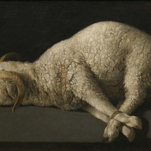 The Politics of the Lamb of God—John 1:29-42 (Amy Allen)