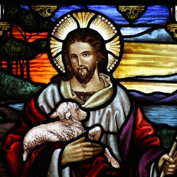 The Politics of a Sheepfold—Acts 2:42-47; John 10:1-10 (Amy Allen)