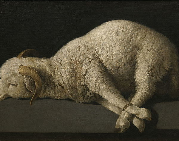 The Politics of a Slain Lamb—Revelation 7:9-17 (Amy Allen)