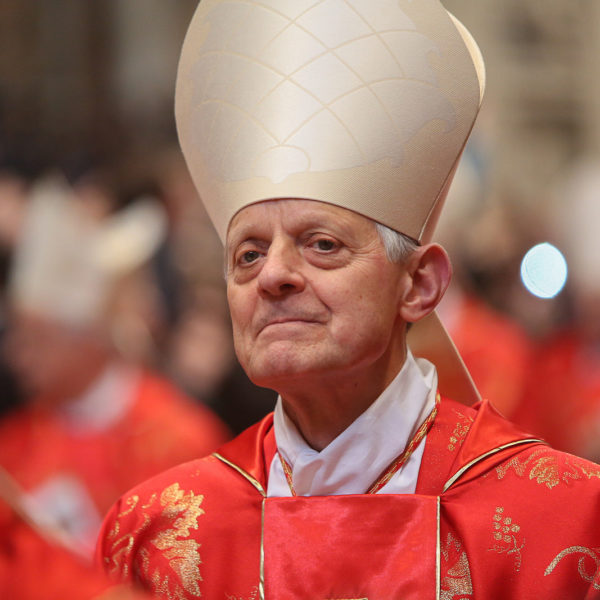 The Church and Racism: Cardinal Donald Wuerl on the Challenge of Racism Today (Ramón Luzárraga)