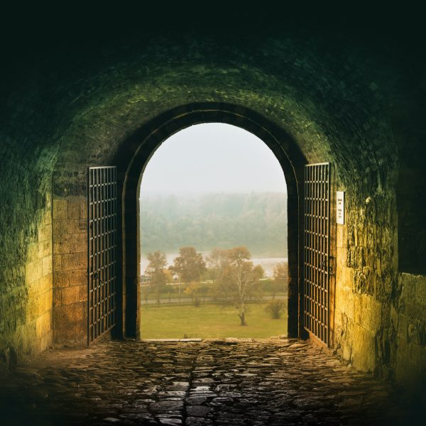 Abundant Life in the Sheepfold: John 10:1-10 and the Gates We Live Behind in this Time of COVID-19